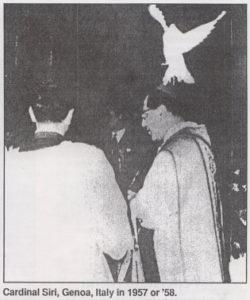 cardinal-siri-dove